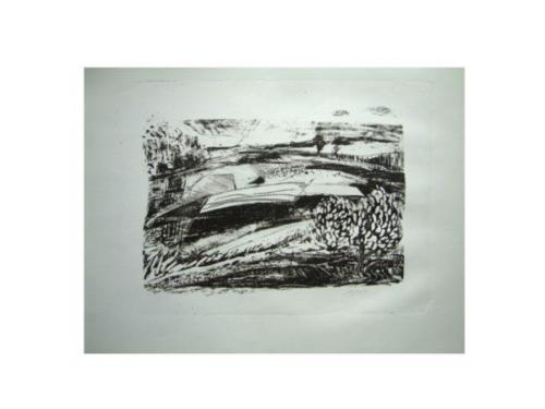 earth-in-patches-litho13-1-600x450 (1)